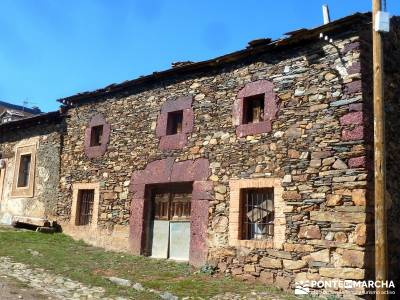 Valdebecerril - Pueblos Negros; agencia senderismo; visitas por madrid;taxus baccata